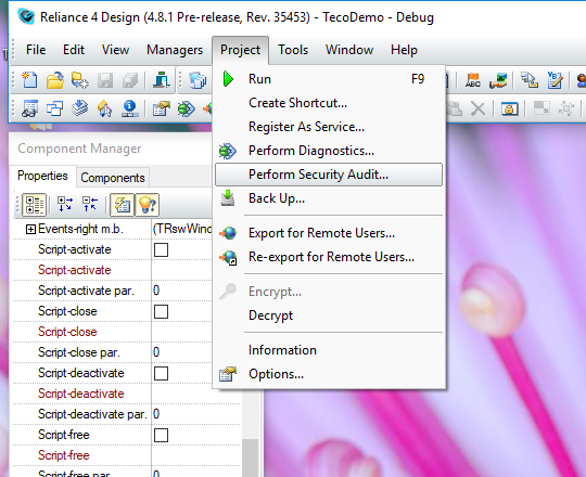 Perform Security Audit dialog, Reliance 4 Design