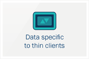 Data specific to thin clients